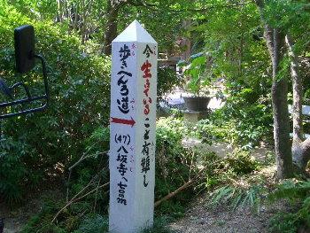 jyoruri5.jpg